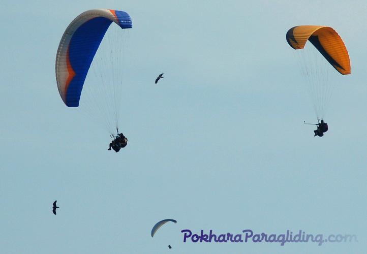 Pokhara_Paragliding_Nepal_16.jpg