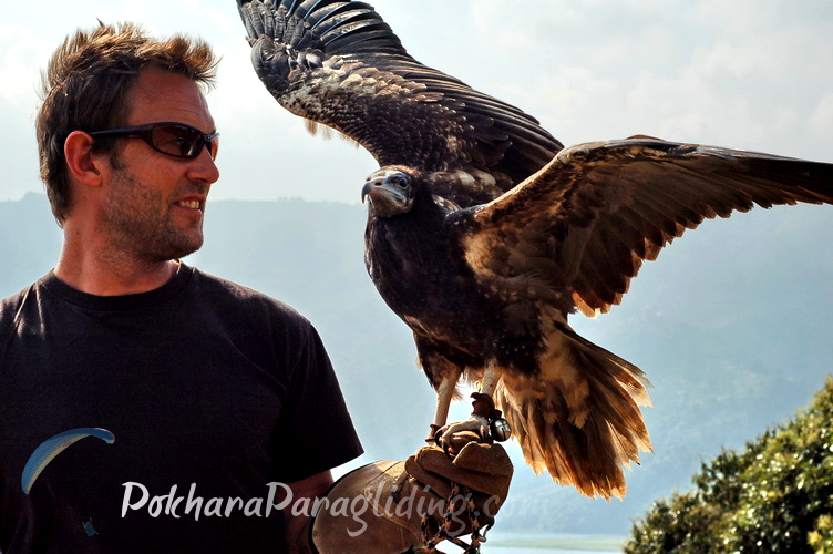 Pokhara_parahawking_3